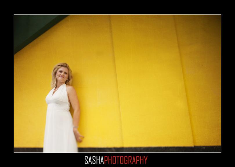 san francisco city hall wedding july 011