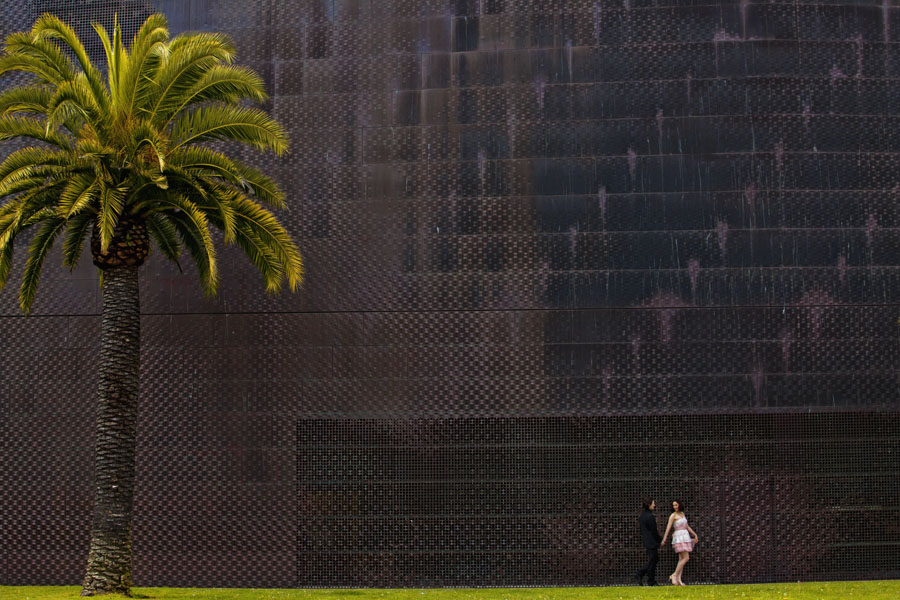 de young museum engagement session