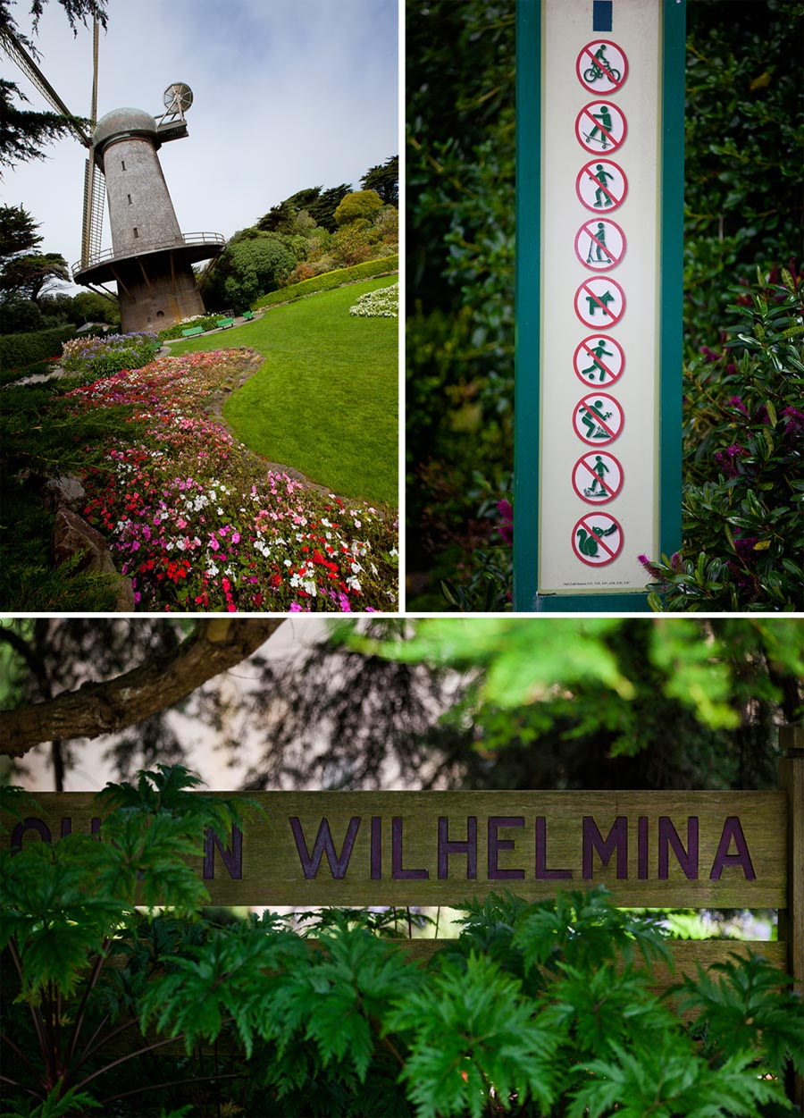 queen wilhelmina windmill san francisco wedding
