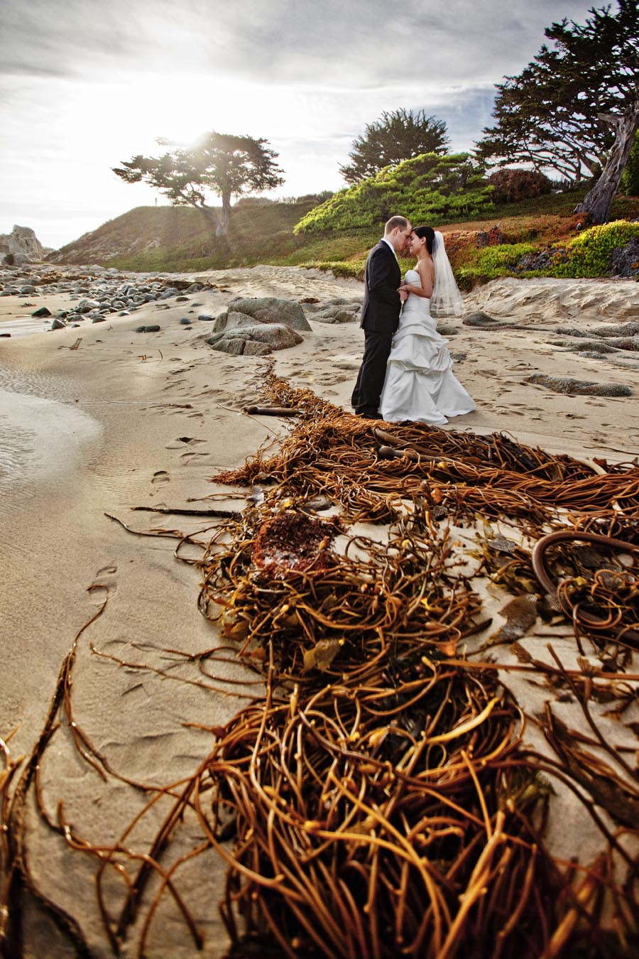 carmel wedding stewarts cove