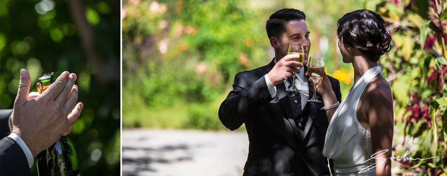 campovida wedding toast