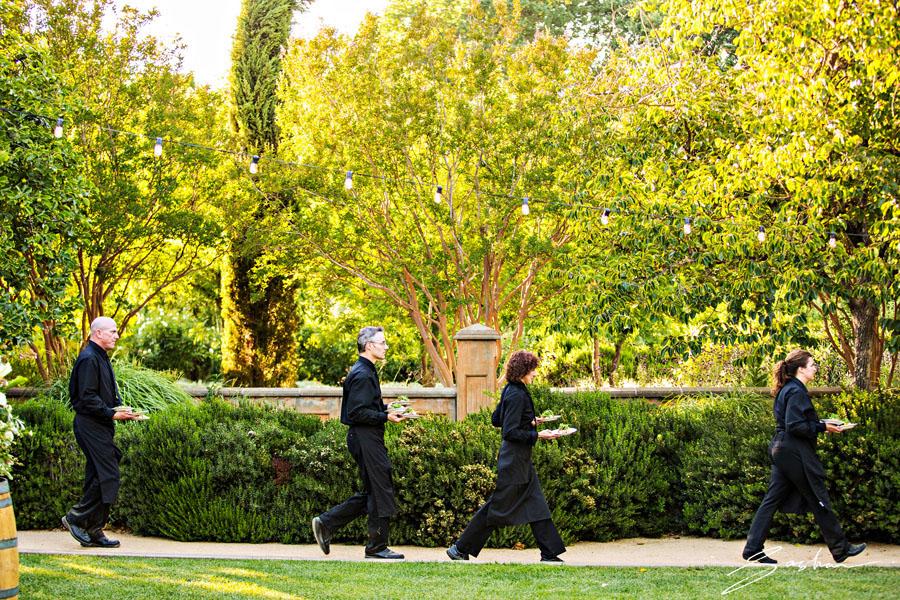 campovida waiters