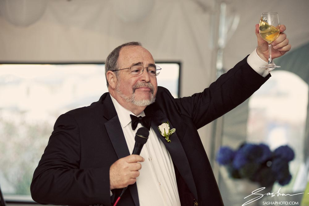 father of the bride wedding toast